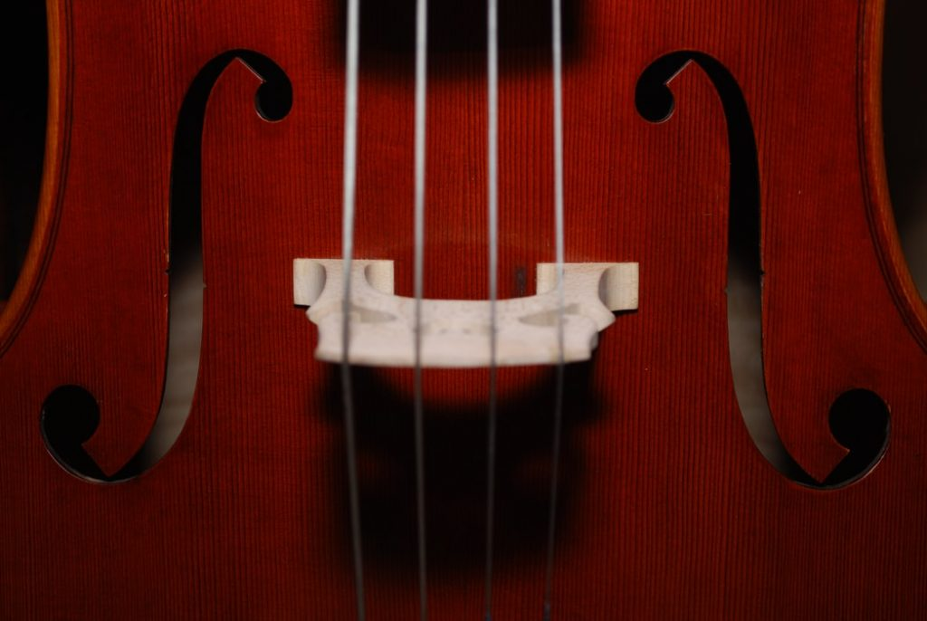 What Is The Difference Between A Fiddle And A Violin What is the easiest string instrument to learn