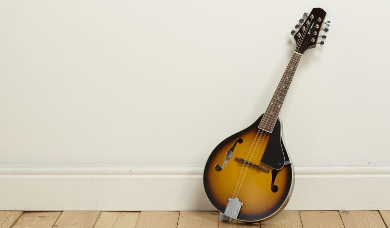 What Are the Best Mandolin Brands