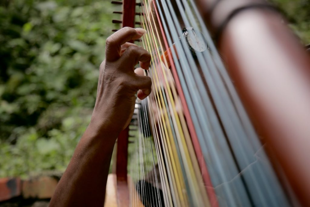 buying a harp for beginners What is the easiest string instrument to learn
