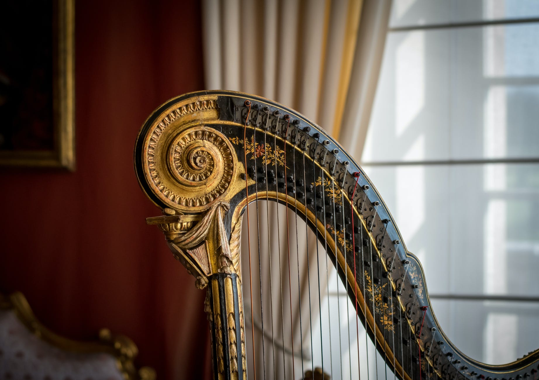 Buying a Harp for Beginners