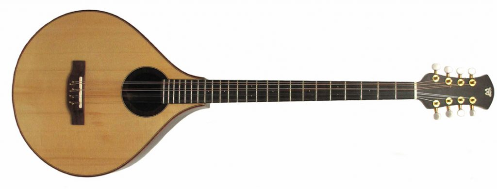 what is a cittern instrument